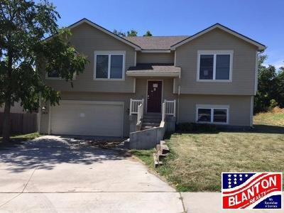 Junction City Single Family Home For Sale: 2419 Sawmill Road
