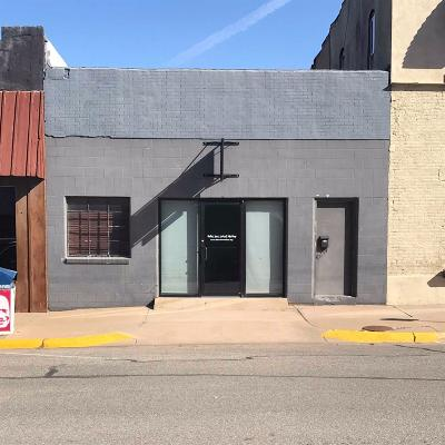 Commercial For Sale: 309 North Cedar Street