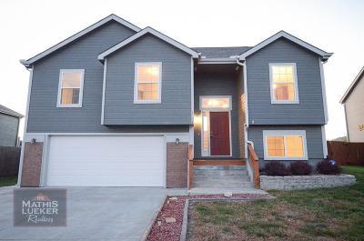 Junction City Single Family Home For Sale: 1002 Dagen Lane