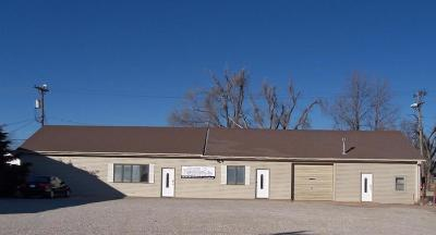 Ellinwood KS Commercial For Sale: $87,900