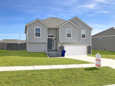 Junction City Single Family Home For Sale: 1007 Dakota Lane