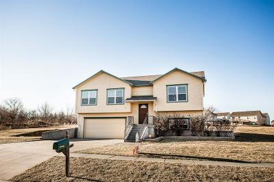 Junction City Single Family Home For Sale: 1906 Ehlers Court