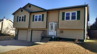 Junction City Single Family Home For Sale: 1227 Caroline Avenue