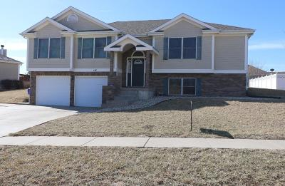 Junction City Single Family Home For Sale: 114 Cheyenne Drive