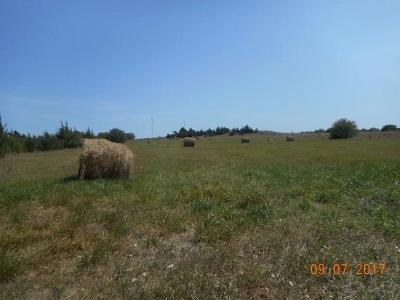Herington Farm For Sale: 1441 Us Hwy 77