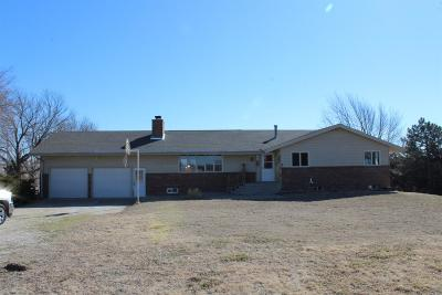 Dickinson County Single Family Home For Sale: 908 South Bridge