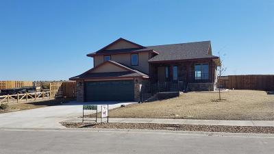 Garden City Single Family Home For Sale: 2210 Glenwood Drive