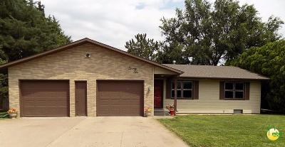 Sublette Single Family Home For Sale: 22 Diaden Drive