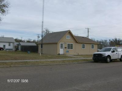 Garden City Single Family Home For Sale: 803 East Laurel Street