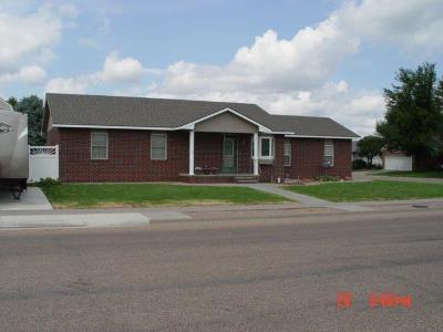 Garden City Single Family Home For Sale: 613 Long Boulevard