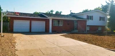 Garden City Single Family Home For Sale: 1510 Mikes Drive
