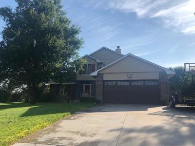 Garden City Single Family Home For Sale: 2150 Andover Drive