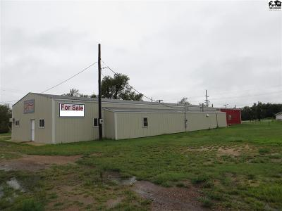 Commercial For Sale: 613 E Kansas Ave