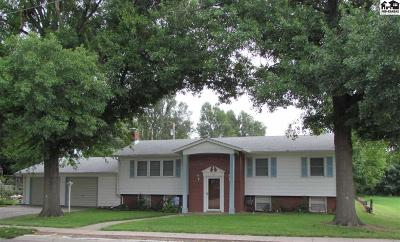Buhler Single Family Home For Sale: 114 S Wall St