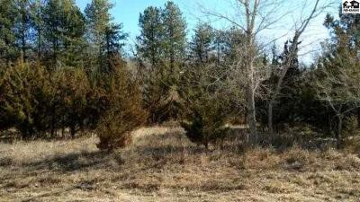 Residential Lots & Land For Sale: 2500 Riverbirch Rd