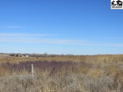 Pratt KS Residential Lots & Land For Sale: $27,200