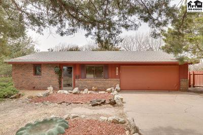 Hutchinson Single Family Home For Sale: 10171 Golden Arrow Dr