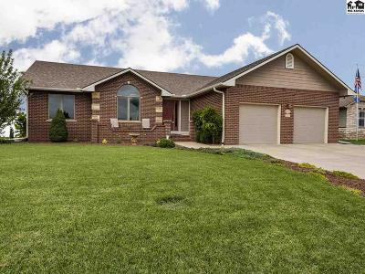 Reno County Single Family Home For Sale: 3201 Harvard Pl