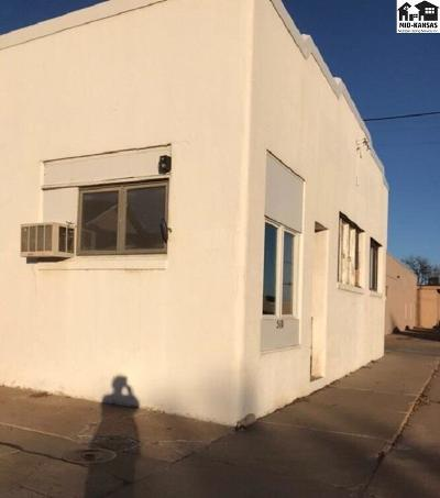 Commercial For Sale: 510 W 5th Ave