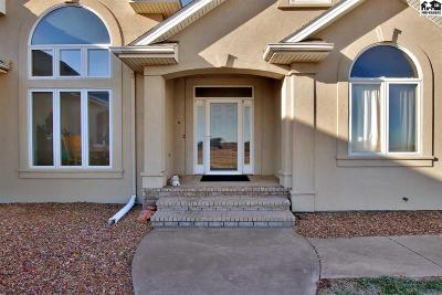 Haven Single Family Home For Sale: 17005 S Haven Rd