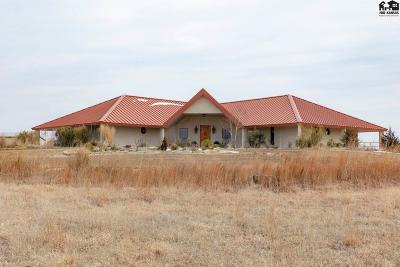 Hutchinson Single Family Home For Sale: 9101 E 4th Ave