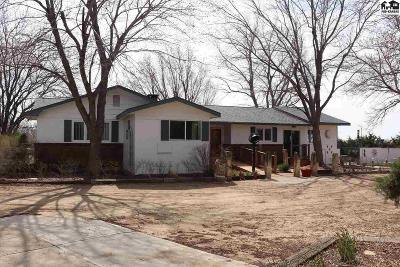 Reno County Single Family Home For Sale: 715 E 56th Ave