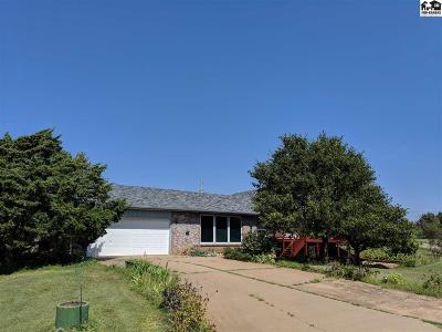Reno County Single Family Home For Auction: 3818 E Shelton Rd