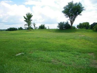 Andrew County Residential Lots & Land For Sale: Lot 3 Riverview Drive