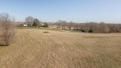 Buchanan County Residential Lots & Land For Sale: Lot 8 NE NE State Route W