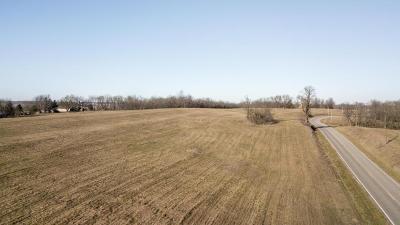 Buchanan County Residential Lots & Land For Sale: Lot 10 NE NE State Route W