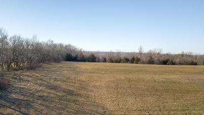 Buchanan County Residential Lots & Land For Sale: Lot 11 NE NE State Route W