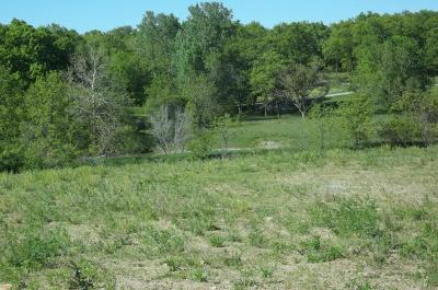Daviess County Residential Lots & Land For Sale: 738 Yacht Club Circle