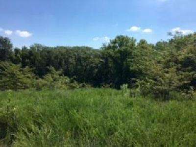 Buchanan County Residential Lots & Land For Sale: Tract Castile Drive