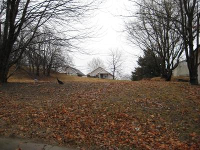 Buchanan County Residential Lots & Land For Sale: 1103 S 12th Street