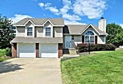 Clinton County Single Family Home For Sale: 104 Somerset Drive