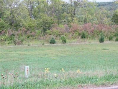 Residential Lots & Land For Sale: 27604 Tonganoxie Road