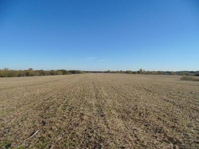 Clinton County Residential Lots & Land For Sale: Hinchey Lane