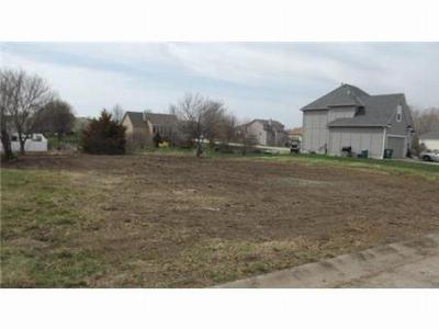 Raymore MO Residential Lots & Land Sold: $29,900