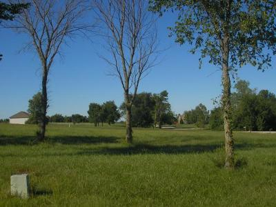 Cass County Residential Lots & Land For Sale: 247th & Trail Ridge Street