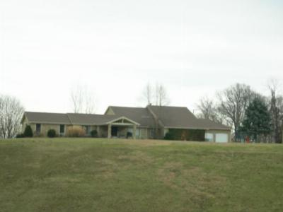Lansing Single Family Home For Sale: 11625 Kelly Rd Road