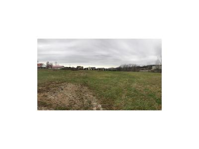 Residential Lots & Land For Sale: 00000 Eisenhower Road