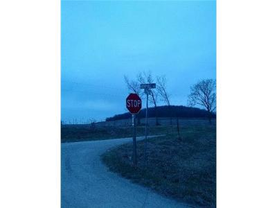 Residential Lots & Land For Sale: Chieftain Road