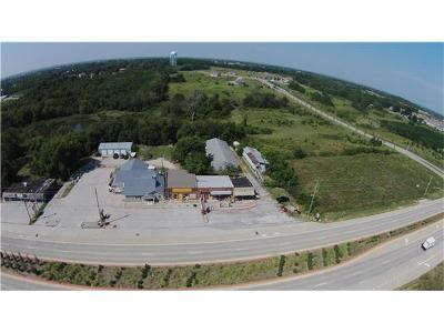 Commercial For Sale: 9324 S M 7 Highway