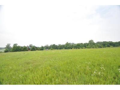 Lone Jack Residential Lots & Land For Sale: 1003 Hunters Ridge Boulevard
