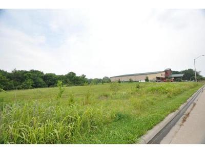 Lone Jack Residential Lots & Land For Sale: 1002 Hunters Ridge Boulevard
