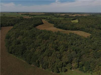 Holt County Residential Lots & Land For Sale: Holt 260 Road