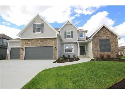 Kansas City Single Family Home Model: 8608 NE 90th Street
