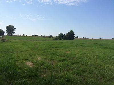 Daviess County Residential Lots & Land For Sale: 240th Street