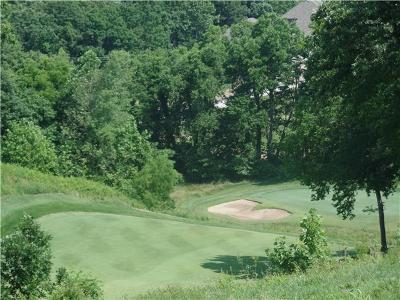 Platte County Residential Lots & Land For Sale: Lot 7 Chateau Lane