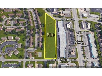 Blue Springs Residential Lots & Land For Sale: Tbd Clark Road